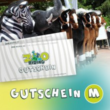 Animal-Riding Gutschein M